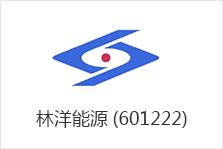 林洋能源(601222)